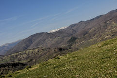 холмы Стоковое фото RF