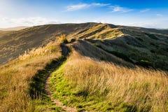 Холмы Castlepoint стоковые фото
