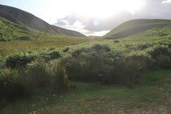 Холмы Pentland около Эдинбурга, Шотландии стоковые фотографии rf