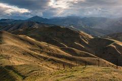 Холмы Wither в Blenheim, Новой Зеландии стоковое фото rf