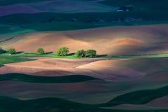 Холм и сельскохозяйственное угодье завальцовки Стоковая Фотография