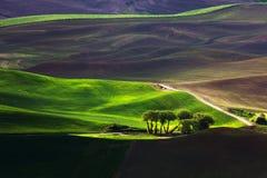 Холм и сельскохозяйственное угодье завальцовки Стоковые Фотографии RF