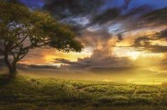 Холм на заходе солнца стоковое изображение rf