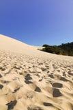 Холм песка Tangalooma стоковое изображение rf