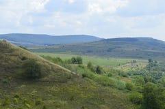 Холм с лесом Стоковые Фотографии RF