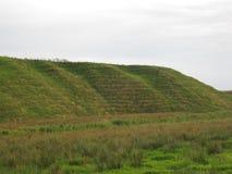 Холм травы Стоковая Фотография RF
