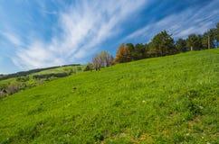 холм Стоковая Фотография RF