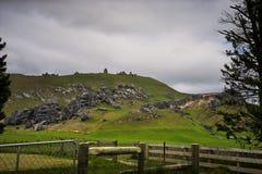 Холм Castel, Новая Зеландия Стоковое Изображение