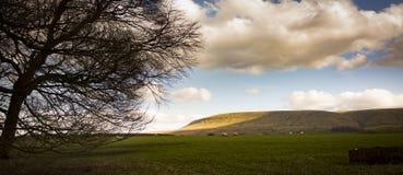 Холм Pendle, Lancashire, Великобритания Стоковые Фотографии RF