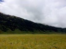 Холм Savana вокруг горы Bromo Стоковое фото RF