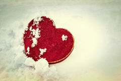 холодная влюбленность Стоковое фото RF