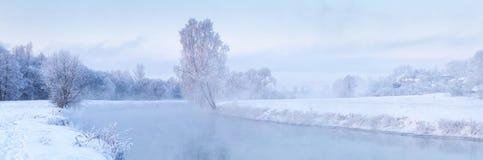 холодная зима утра Стоковое фото RF