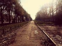 холодная дорога Стоковое фото RF