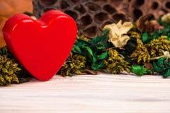 Холодная предпосылка с высушенными цветками заводов и красным сердцем Стоковое Изображение RF