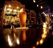 Холодное пиво Стоковое Изображение