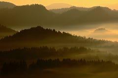 Холодное туманное туманное утро с восходом солнца в долине падения богемского парка Швейцарии Холмы с туманом, ландшафт чехии, Стоковое Фото