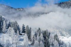 Холодное туманное утро Стоковое Изображение