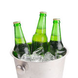 холодные бутылки пива в ведре с льдом на белой предпосылке Стоковое Изображение RF