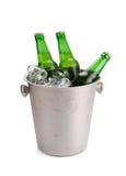 холодные бутылки пива в ведре с льдом на белой предпосылке Стоковая Фотография