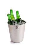 холодные бутылки пива в ведре с льдом на белой предпосылке Стоковое Изображение