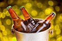 холодные бутылки пива в ведре с льдом на белой предпосылке Стоковое фото RF