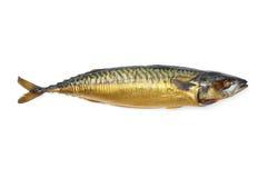 Холодные, который курят рыбы Стоковая Фотография