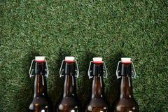 Холодные пивные бутылки лежа на траве Стоковые Фото