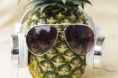 Холодный ананас Стоковые Изображения