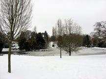 Холодный белый день озером стоковое изображение
