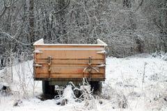холодный день Стоковые Фото