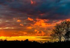 Холодный заход солнца Стоковое Изображение RF