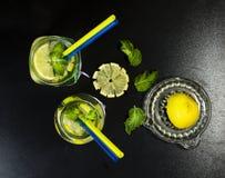 Холодный лимонад в бутылках с лимонами Стоковые Изображения RF