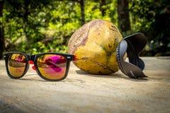 Холодный кокос Стоковая Фотография