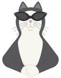 Холодный кот Стоковая Фотография