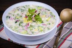 Холодный овощной суп на югурте, основании кисл-молока - okroshka стоковые изображения