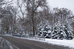Холодный путь Стоковые Изображения RF