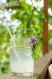 Холодный свежий лимонный сок Селективный фокус Стоковое фото RF