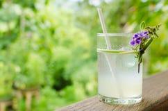 Холодный свежий лимонный сок Стоковое Фото