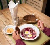 Холодный суп бураков с капустой и яичком Стоковая Фотография RF
