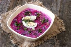 Холодный суп бураков Стоковые Фото