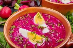 Холодный суп бураков Стоковые Изображения