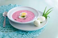 Холодный суп бураков Стоковое Изображение