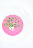 Холодный суп бураков (Holodnik) Холодный суп сделанный от свекл, огурцов, яичек, трав и югурта Стоковое Изображение RF