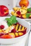 Холодный суп плодоовощ с поленикой, зажаренными нектаринами, мороженым, вертикальным Стоковая Фотография RF