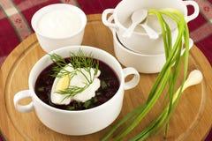 Холодный суп свеклы Стоковое фото RF