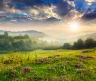 Холодный туман в горах на лесе на заходе солнца Стоковые Изображения