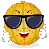 Холодный характер дыни с солнечными очками Стоковое Фото