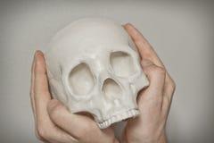 холодный череп стоковые изображения