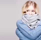 Холодок зимы. Стоковые Изображения RF