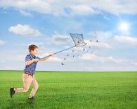 Ход ребенка и заразительные бабочки с сетью на поле Стоковая Фотография RF